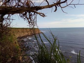 the coast of Cosiguina
