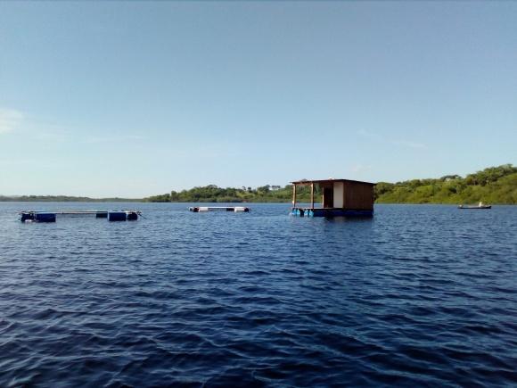 fish farms in the estuary