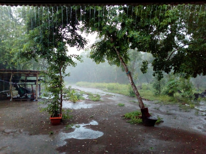 rainy season is fun...