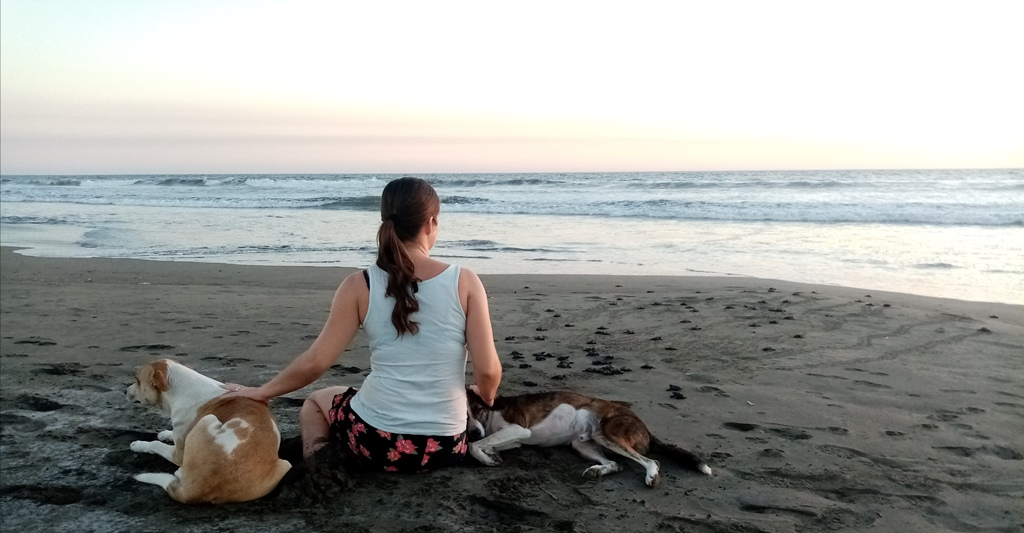 some romantic time with our dogs